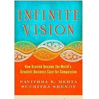 The Infinite Vision by Pavithra K. Mehta