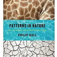 Patterns in Nature by Philip Ball