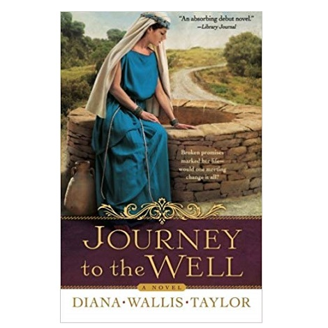 Journey to the Well by Diana Taylor