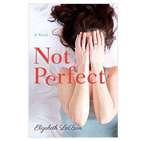 Not Perfect by Elizabeth LaBan