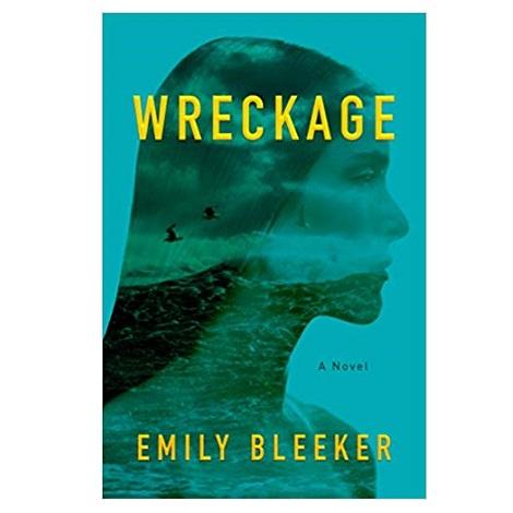 Wreckage by Emily Bleeker