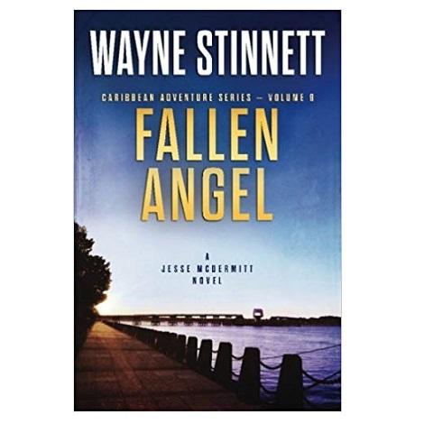 Fallen Angel by Wayne Stinnett