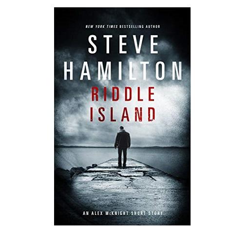 Riddle Island by Steve Hamilton