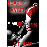 Scarlet Angel by S.T. Abby